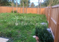 Garden Landscaping Project 22 - Photo 2